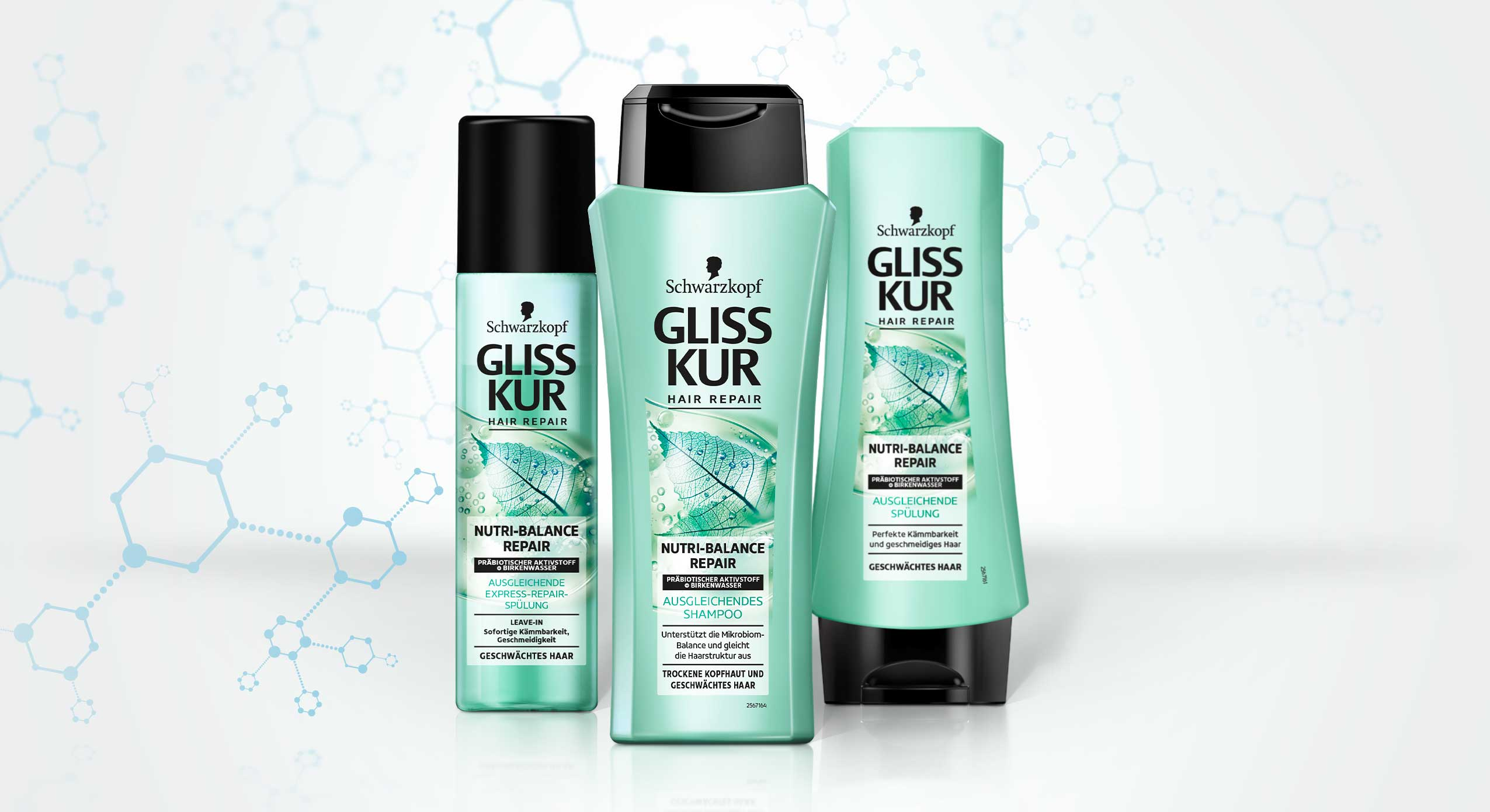 New Gliss Kur subline Nutri-Balance Repair made by baries