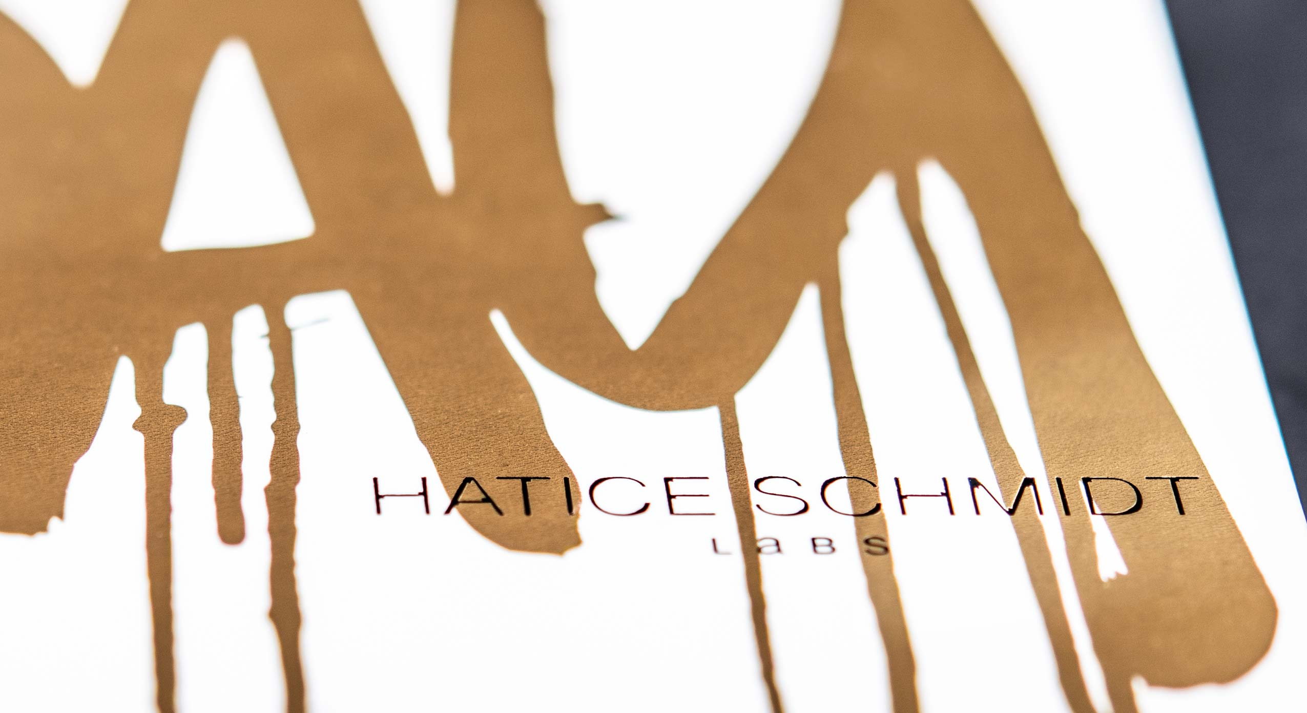 Close up from Hatice Schmidt LaBS logo on eye shadow palette